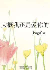 《(火影同人)大概我还是爱你的》 作者:kagula txt文件大小:61.38 KB