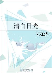 《清白日光-白日光》 作者:它在烧 txt文件大小:501.57 KB