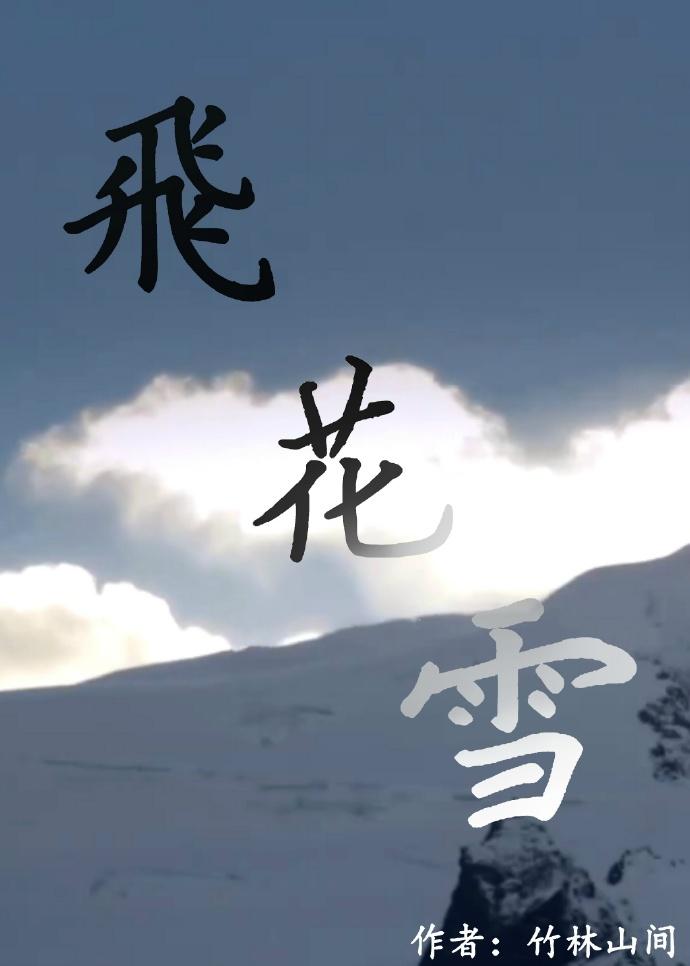 《飞花雪》 作者:竹林山间 txt文件大小:220.24 KB