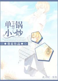 《(全职高手同人)[全职]单锅小炒》 作者:葵夏 txt文件大小:252.66 KB