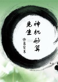 《先生神机妙算》 作者:苏安木 txt文件大小:139.8 KB