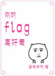 《你的flag真好看》 作者:漫写诗书 txt文件大小:255.58 KB