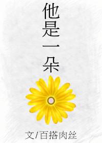 《他是一朵花》 作者:百搭肉丝 txt文件大小:192.58 KB