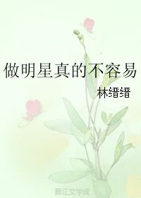 《做明星真的不容易》 作者:林缙缙 txt文件大小:228.94 KB