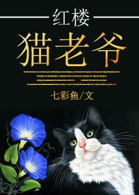 《(红楼同人)红楼猫老爷》 作者:七彩鱼 txt文件大小:360.23 KB