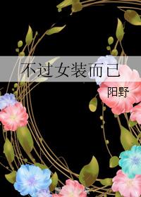 《不过女装而已》 作者:阳野 txt文件大小:200.98 KB