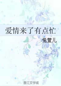 《爱情来了有点忙》 作者:兔萱儿 txt文件大小:919.8 KB