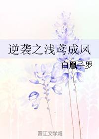 《逆袭之浅鸢成凤》 作者:白凰子罗 txt文件大小:2.03 MB