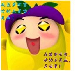 《(综武侠同人)菠萝要吹雪!》 作者:一月痕天 txt文件大小:123.03 KB