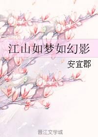 《江山如梦如幻影》 作者:安宜郡 txt文件大小:870.14 KB