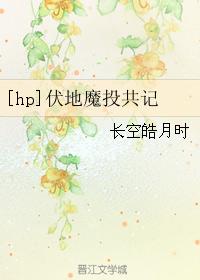 《(HP同人)[hp]伏地魔投共记》 作者:长空皓月时 txt文件大小:79.91 KB