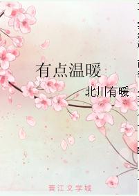 《有点温暖》 作者:北川有暖 txt文件大小:109.56 KB