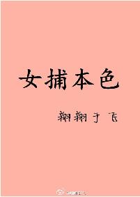 《女捕本色》 作者:翔翔于飞 txt文件大小:2.11 MB