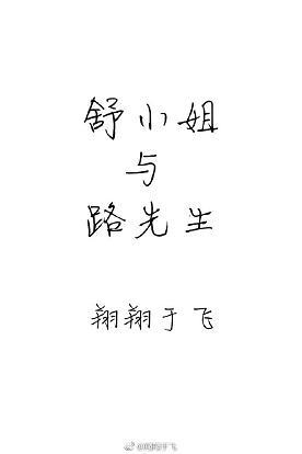 《舒小姐与路先生》 作者:翔翔于飞 txt文件大小:570.33 KB