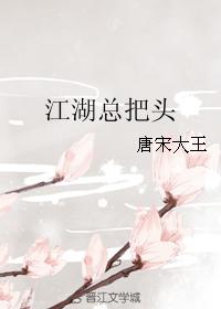 《江湖总把头》 作者:唐宋大王 txt文件大小:274.78 KB