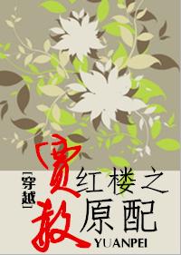 《(红楼同人)穿越红楼之贾赦原配》 作者:梅雨季节情 txt文件大小:389.03 KB