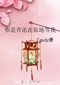 《你是否还在原地等我》 作者:Candy唐 txt文件大小:675.37 KB