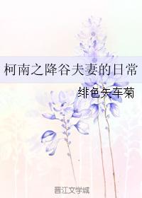 《(柯南同人)柯南之降谷夫妻的日常》 作者:绯色矢车菊 txt文件大小:161.36 KB