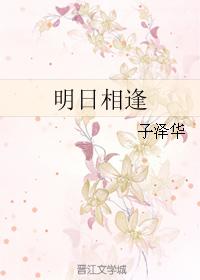 《明日相逢》 作者:子泽华 txt文件大小:337.17 KB