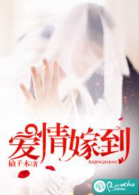 《爱情嫁到》 作者:柚子木 txt文件大小:1.23 MB