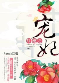 《(红楼同人)红楼之宠妃》 作者:Panax txt文件大小:1.16 MB