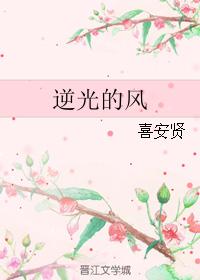 《逆光的风》 作者:喜安贤 txt文件大小:186.69 KB