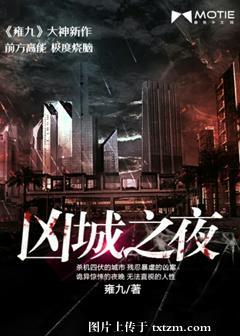 《凶城之夜》 作者:雍九 txt文件大小:1.36 MB