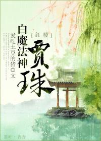 《(红楼同人)红楼之白魔法神贾珠》 作者:爱吃土豆的猪 txt文件大小:408.4 KB
