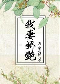 《我妻娇艳-渣男他娘》 作者:西瓜尼姑 txt文件大小:1.3 MB