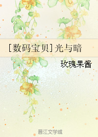 《(数码宝贝同人)[数码宝贝]光与暗》 作者:玫瑰果酱 txt文件大小:488.16 KB