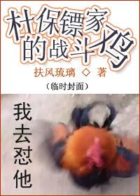 《杜保镖家的战斗鸡》 作者:扶风琉璃 txt文件大小:110.21 KB