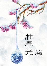 《胜春光》 作者:长空映雪 txt文件大小:442.71 KB