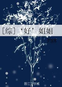 《(综同人)[综]'好'姐姐》 作者:灼沐 txt文件大小:1013.19 KB