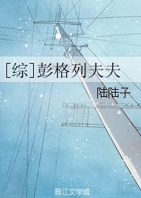 《(综漫同人)[综]彭格列夫夫》 作者:陆陆子 txt文件大小:340.76 KB