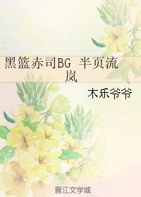 《(黑篮同人)黑篮赤司BG 半页流岚》 作者:木乐爷爷 txt文件大小:127.89 KB